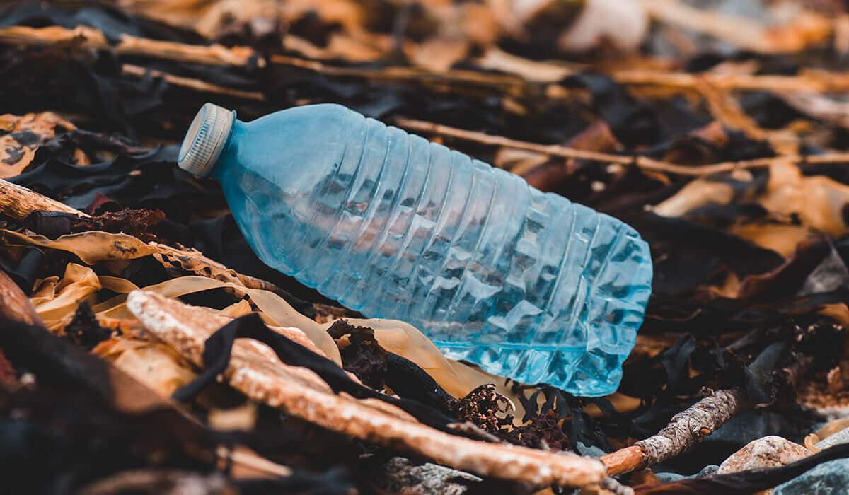 Lov group - Bottle