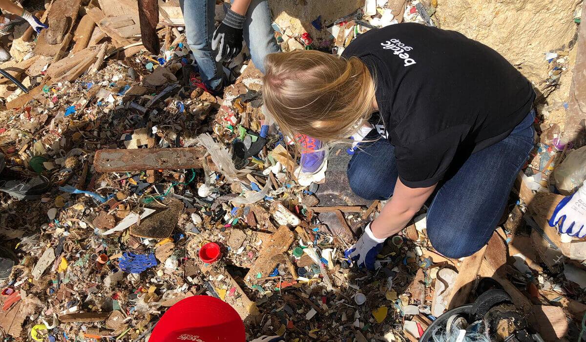 Lov solidarity - Cleaning